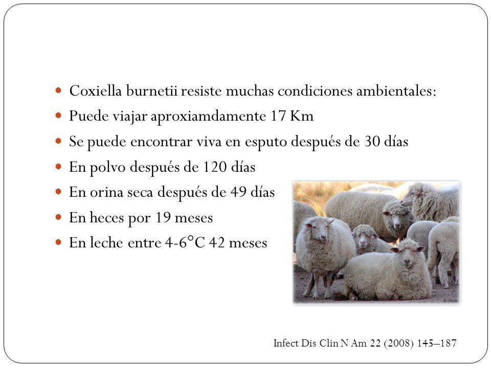 Coxiella burnetii resiste muchas condiciones ambientales: