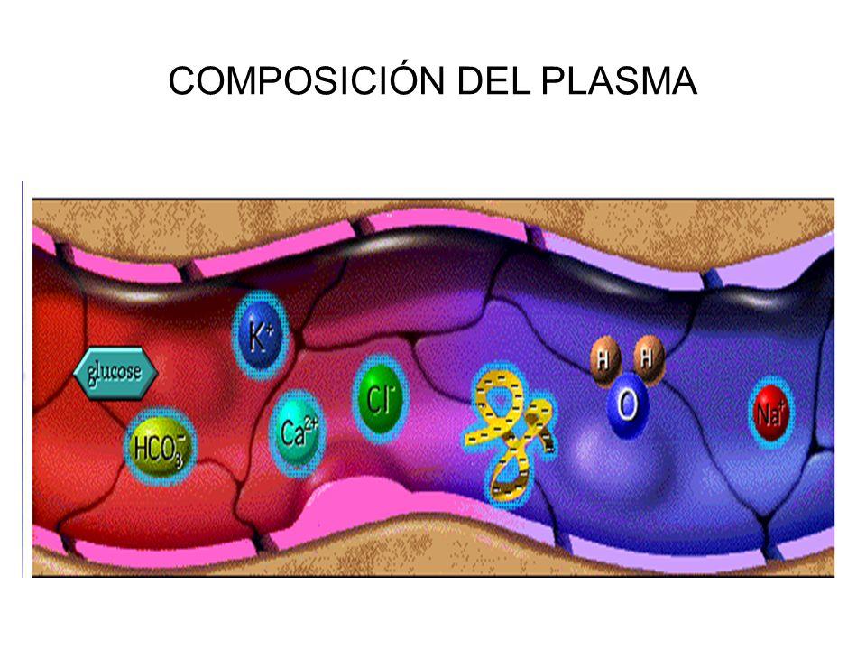 COMPOSICIÓN DEL PLASMA