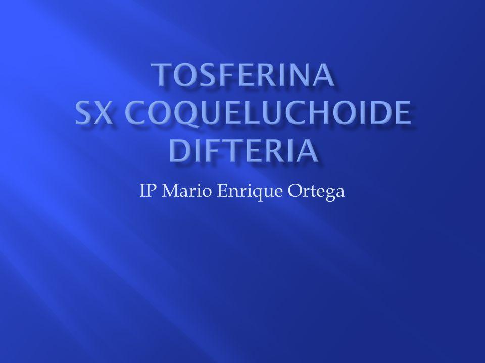 Tosferina SX coqueluchoide Difteria