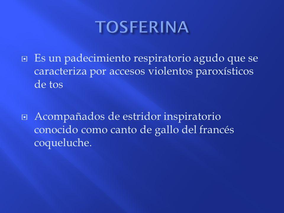 TOSFERINA Es un padecimiento respiratorio agudo que se caracteriza por accesos violentos paroxísticos de tos.