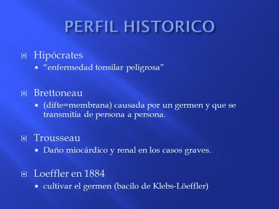 PERFIL HISTORICO Hipócrates Brettoneau Trousseau Loeffler en 1884