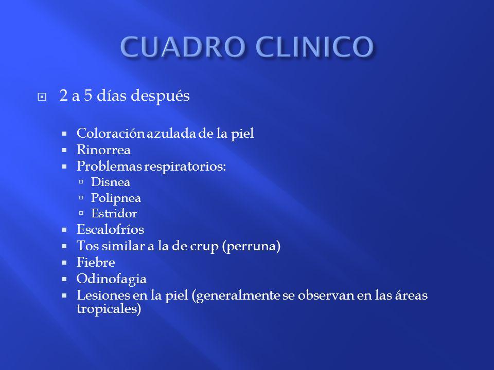 CUADRO CLINICO 2 a 5 días después Coloración azulada de la piel