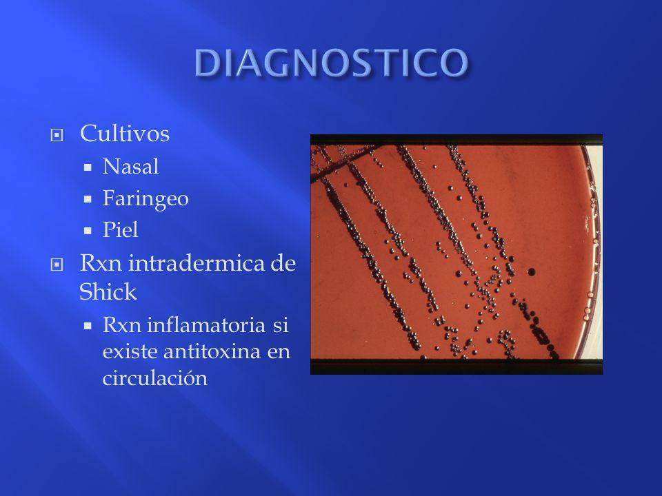 DIAGNOSTICO Cultivos Rxn intradermica de Shick Nasal Faringeo Piel