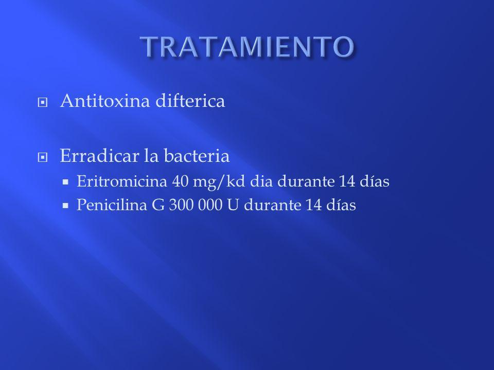 TRATAMIENTO Antitoxina difterica Erradicar la bacteria