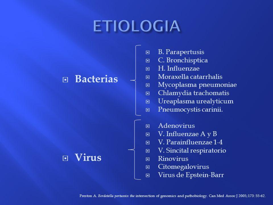 ETIOLOGIA Bacterias Virus B. Parapertusis C. Bronchisptica