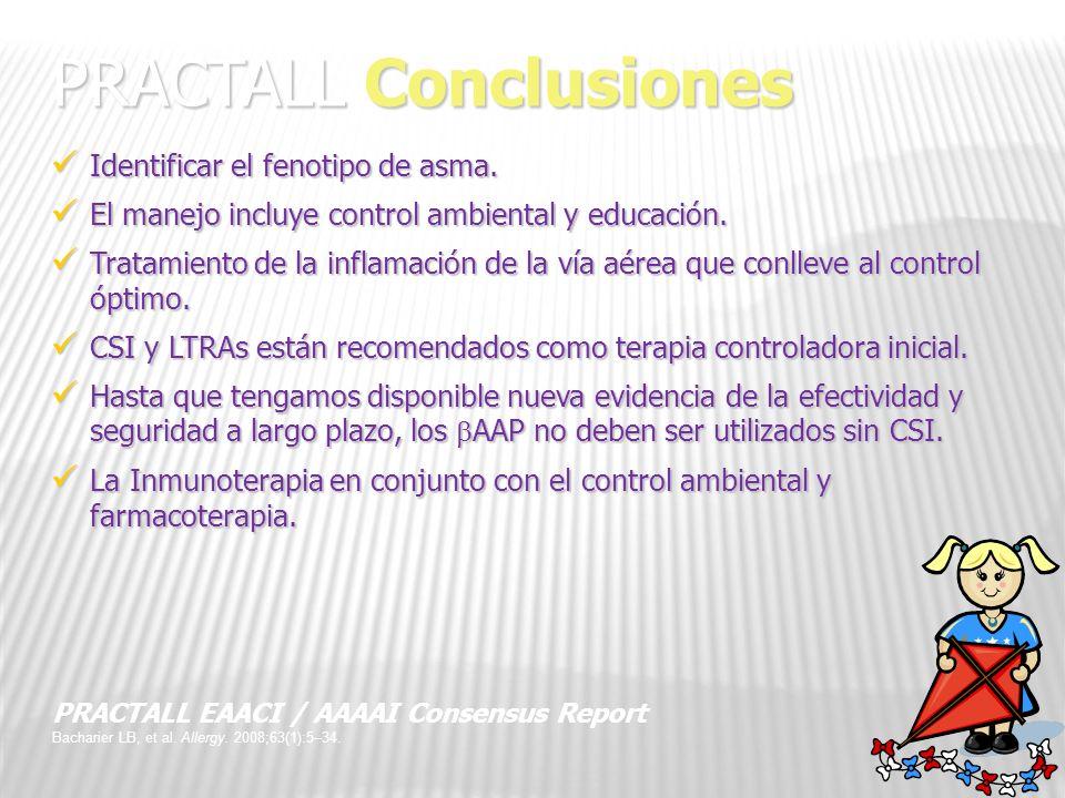 PRACTALL Conclusiones