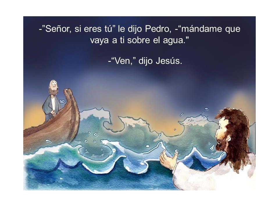 - Señor, si eres tú le dijo Pedro, - mándame que vaya a ti sobre el agua.