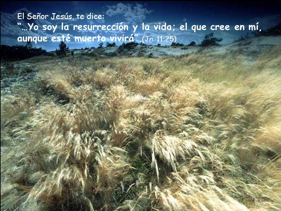El Señor Jesús, te dice: …Yo soy la resurrección y la vida; el que cree en mí, aunque esté muerto vivirá (Jn.