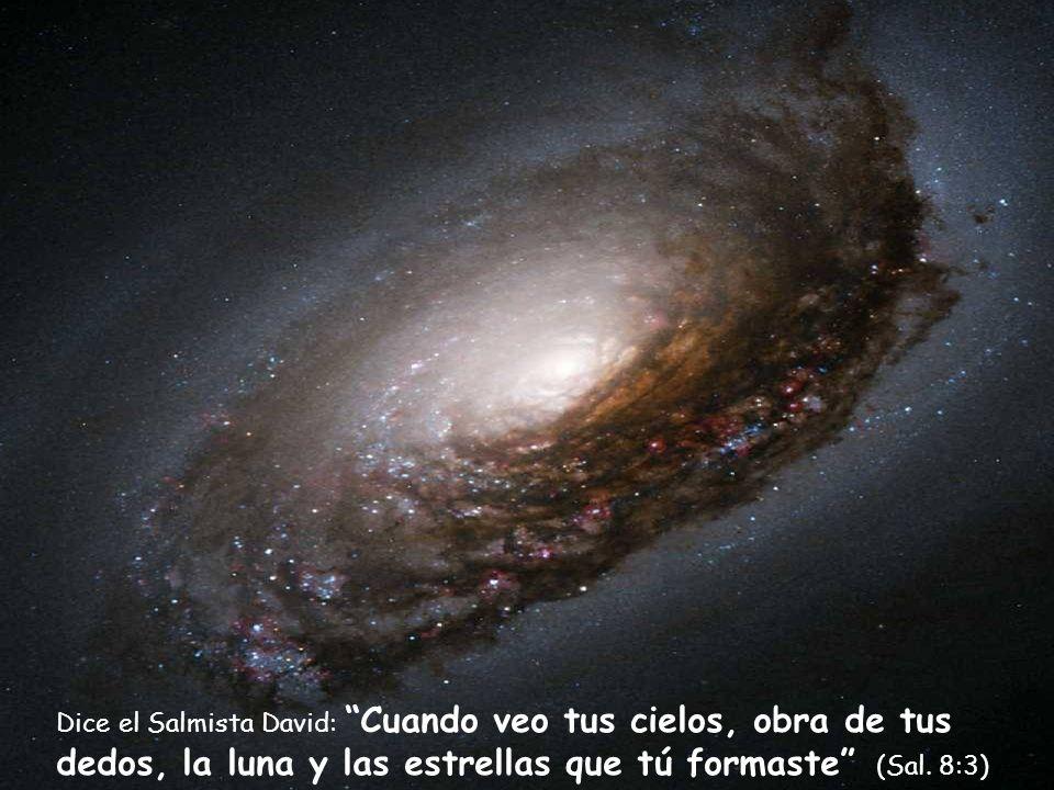 Dice el Salmista David: Cuando veo tus cielos, obra de tus dedos, la luna y las estrellas que tú formaste (Sal.