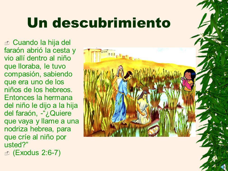 Un descubrimiento Cuando la hija del faraón abrió la cesta y vio allí dentro al niño.
