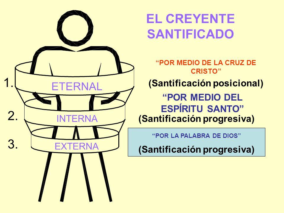 EL CREYENTE SANTIFICADO