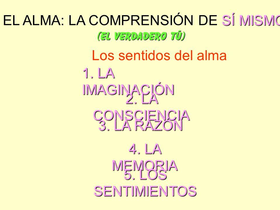 EL ALMA: LA COMPRENSIÓN DE SÍ MISMO