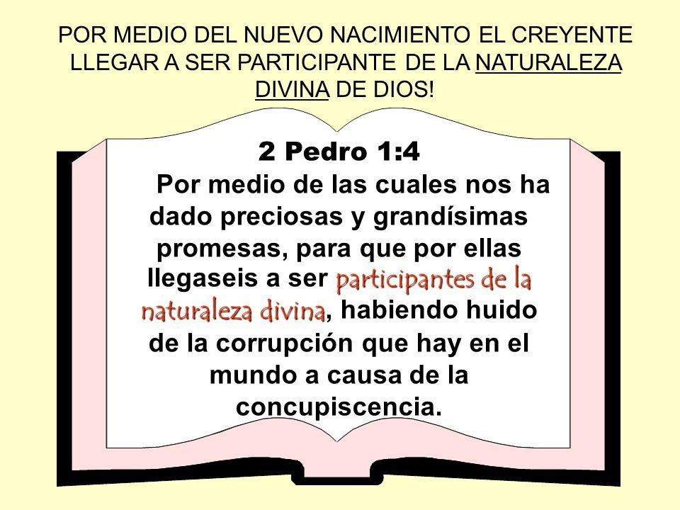 POR MEDIO DEL NUEVO NACIMIENTO EL CREYENTE LLEGAR A SER PARTICIPANTE DE LA NATURALEZA DIVINA DE DIOS!