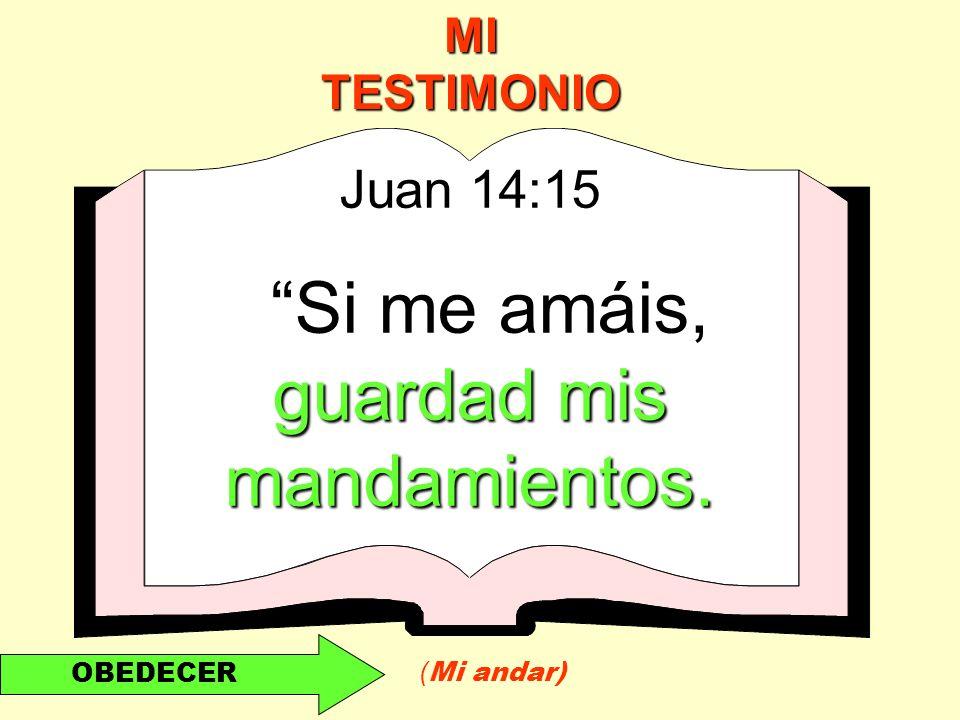 Si me amáis, guardad mis mandamientos.