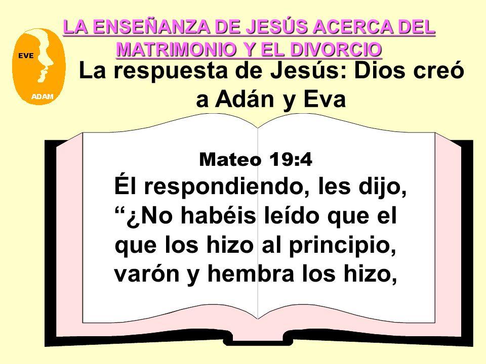 La respuesta de Jesús: Dios creó a Adán y Eva