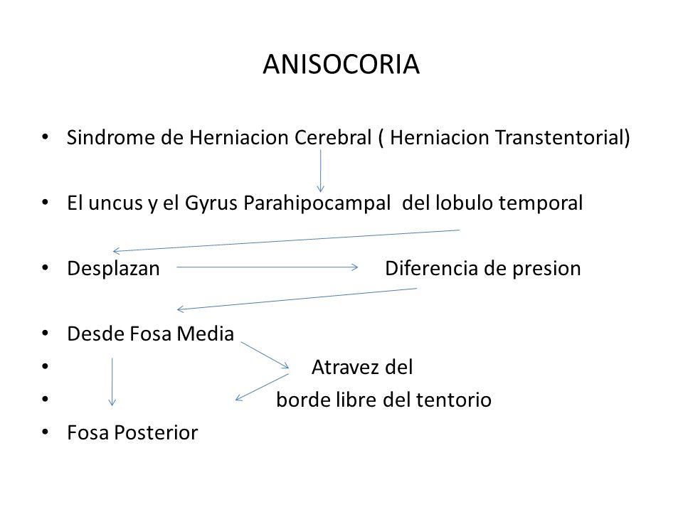 ANISOCORIA Sindrome de Herniacion Cerebral ( Herniacion Transtentorial) El uncus y el Gyrus Parahipocampal del lobulo temporal.