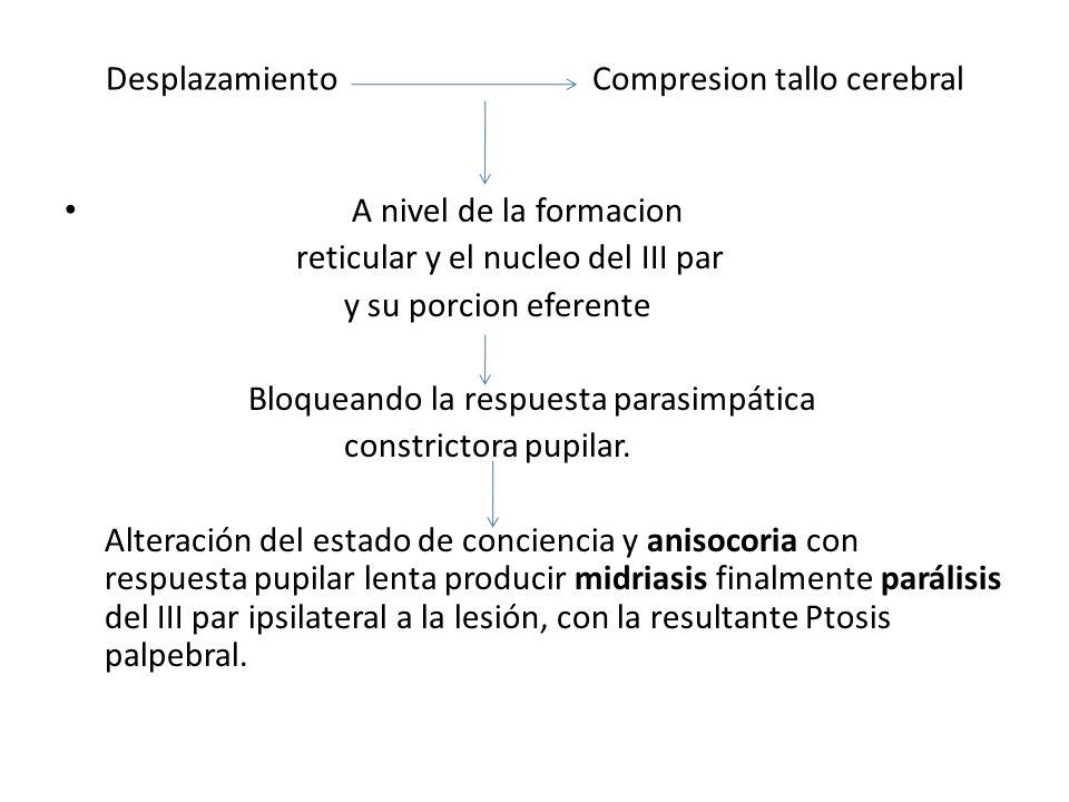 Desplazamiento Compresion tallo cerebral