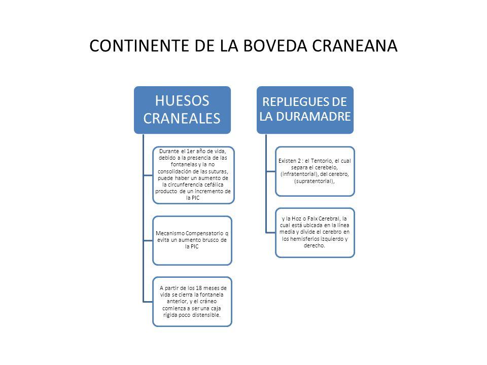 CONTINENTE DE LA BOVEDA CRANEANA