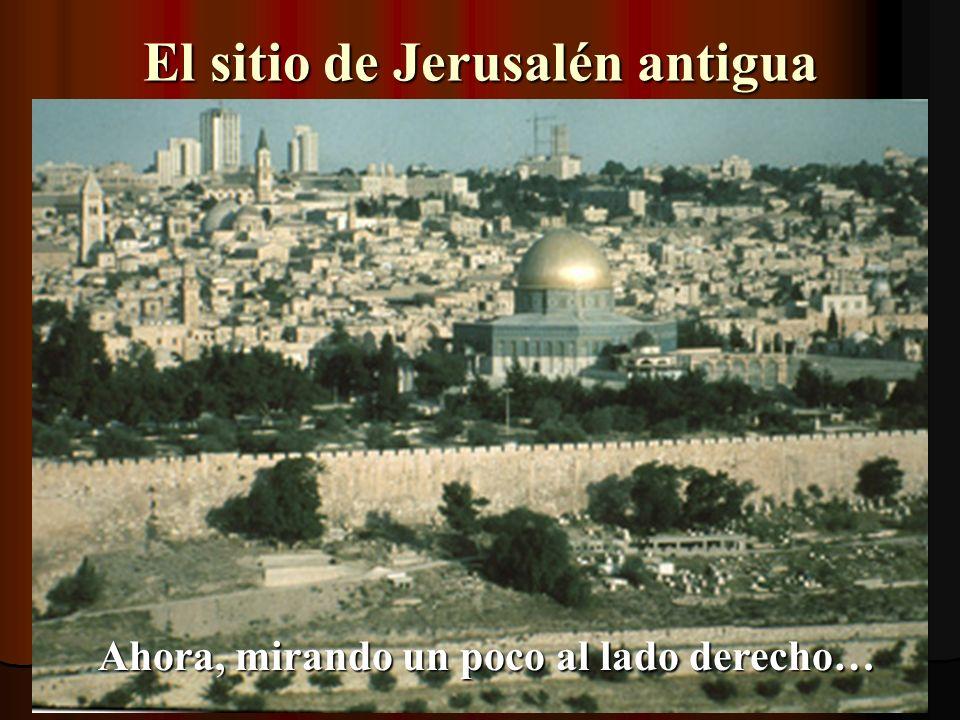 El sitio de Jerusalén antigua