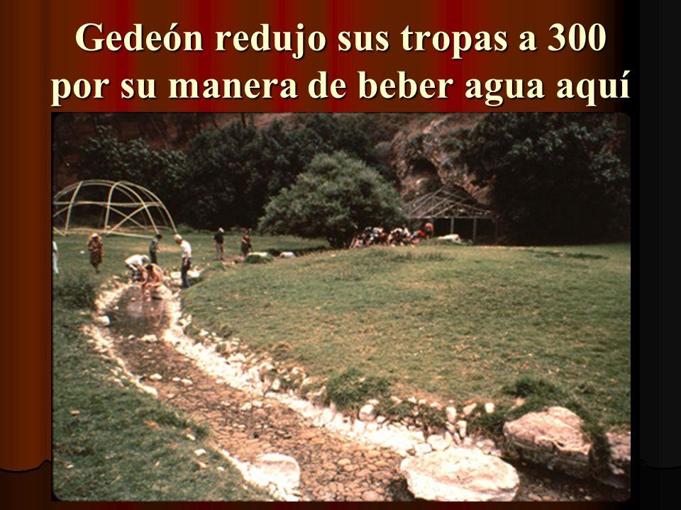 Gedeón redujo sus tropas a 300 por su manera de beber agua aquí