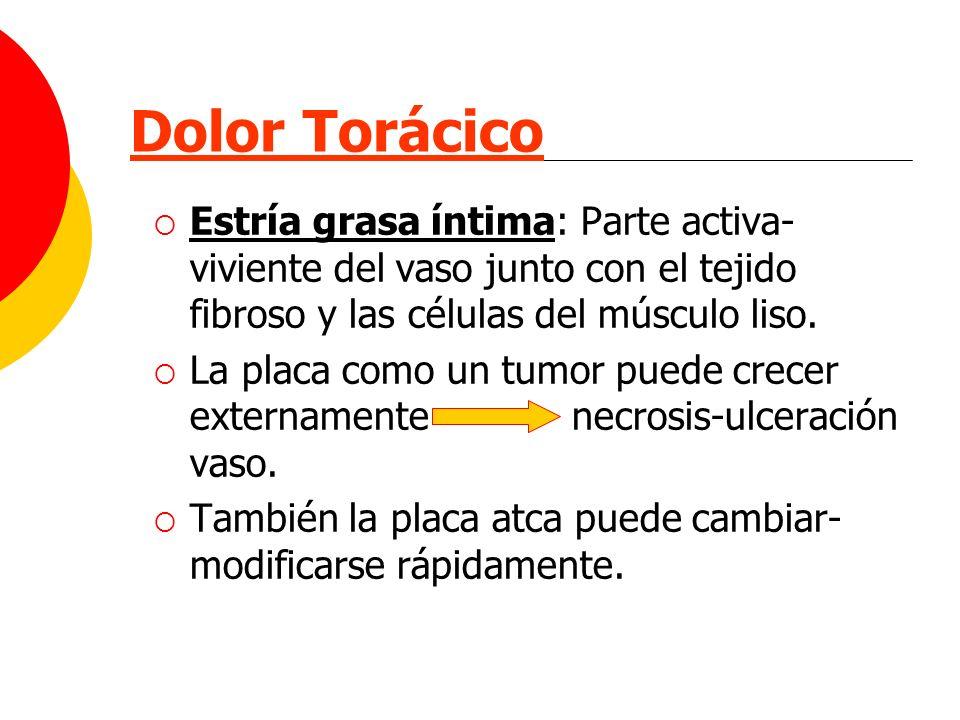 Dolor Torácico Estría grasa íntima: Parte activa-viviente del vaso junto con el tejido fibroso y las células del músculo liso.