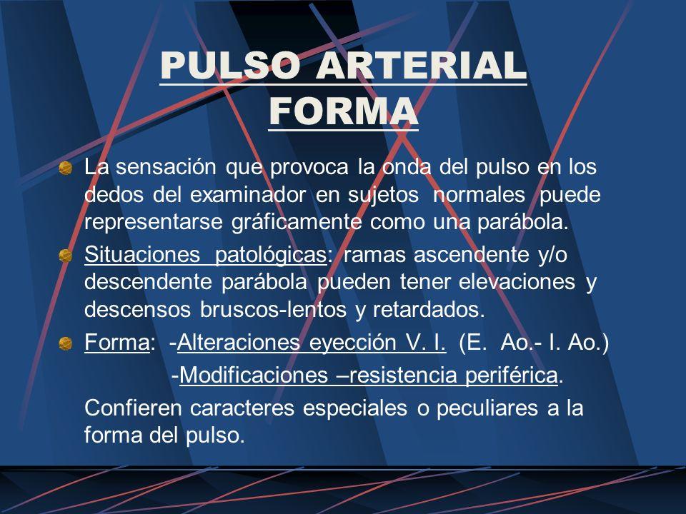 PULSO ARTERIAL FORMA