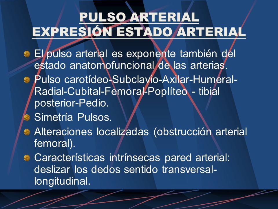 PULSO ARTERIAL EXPRESIÓN ESTADO ARTERIAL