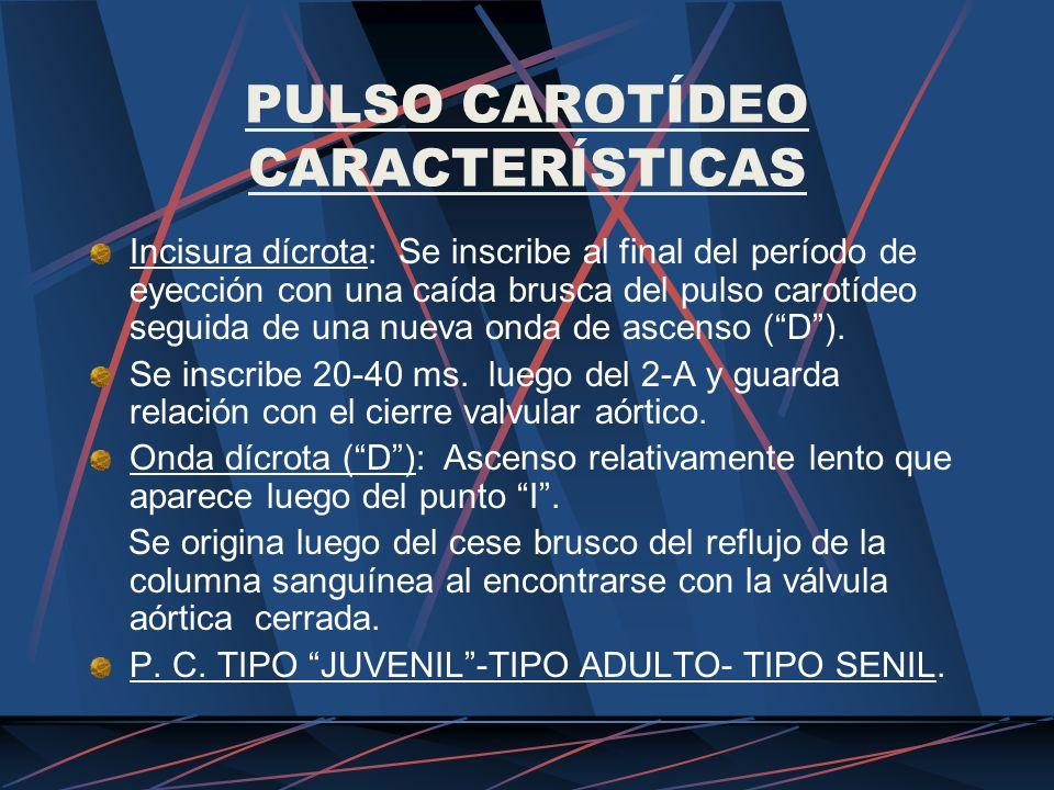 PULSO CAROTÍDEO CARACTERÍSTICAS