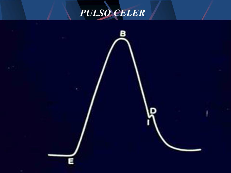 PULSO CELER