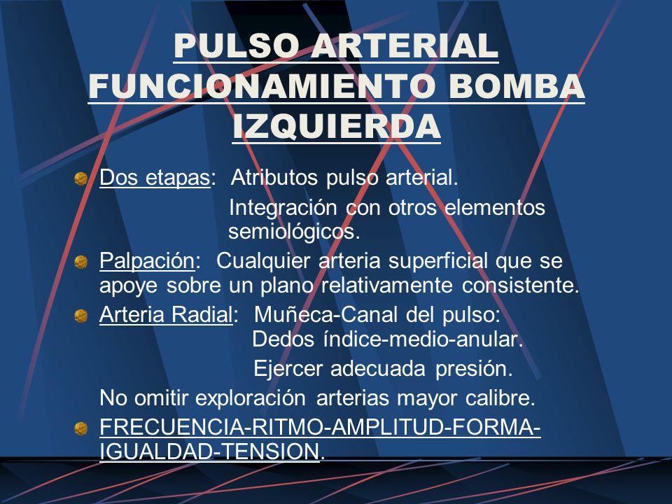 PULSO ARTERIAL FUNCIONAMIENTO BOMBA IZQUIERDA