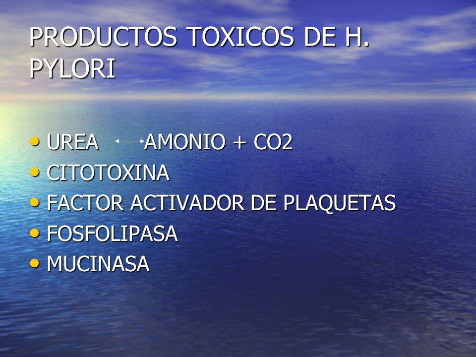 PRODUCTOS TOXICOS DE H. PYLORI