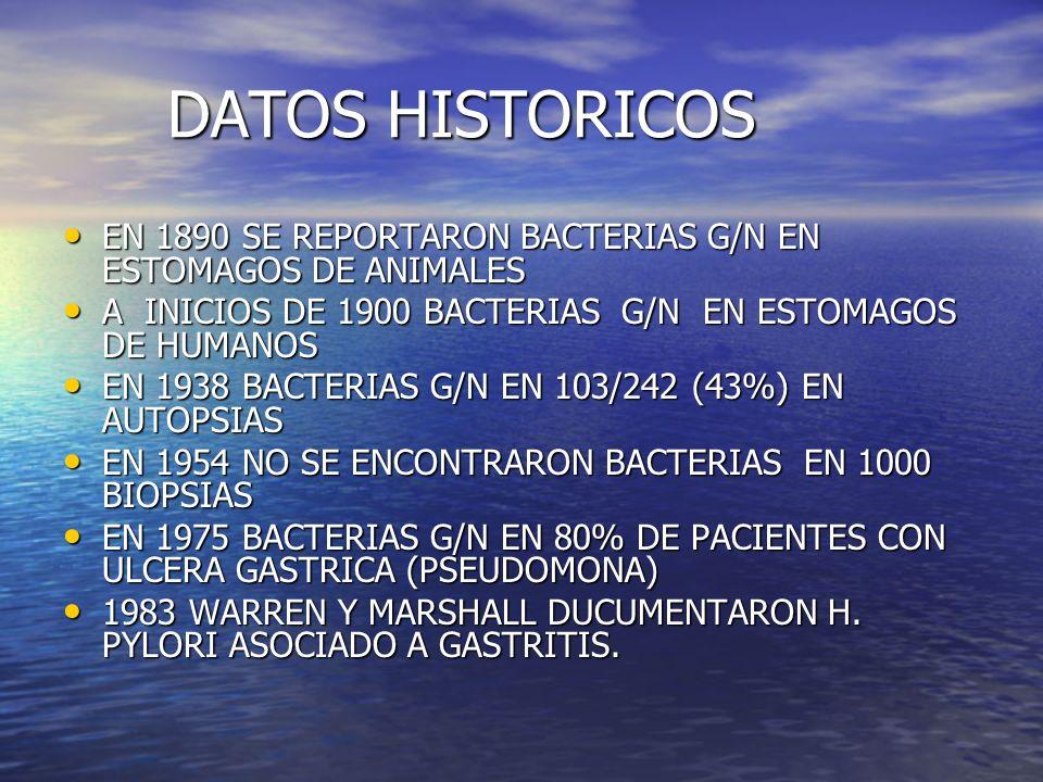 DATOS HISTORICOS EN 1890 SE REPORTARON BACTERIAS G/N EN ESTOMAGOS DE ANIMALES. A INICIOS DE 1900 BACTERIAS G/N EN ESTOMAGOS DE HUMANOS.