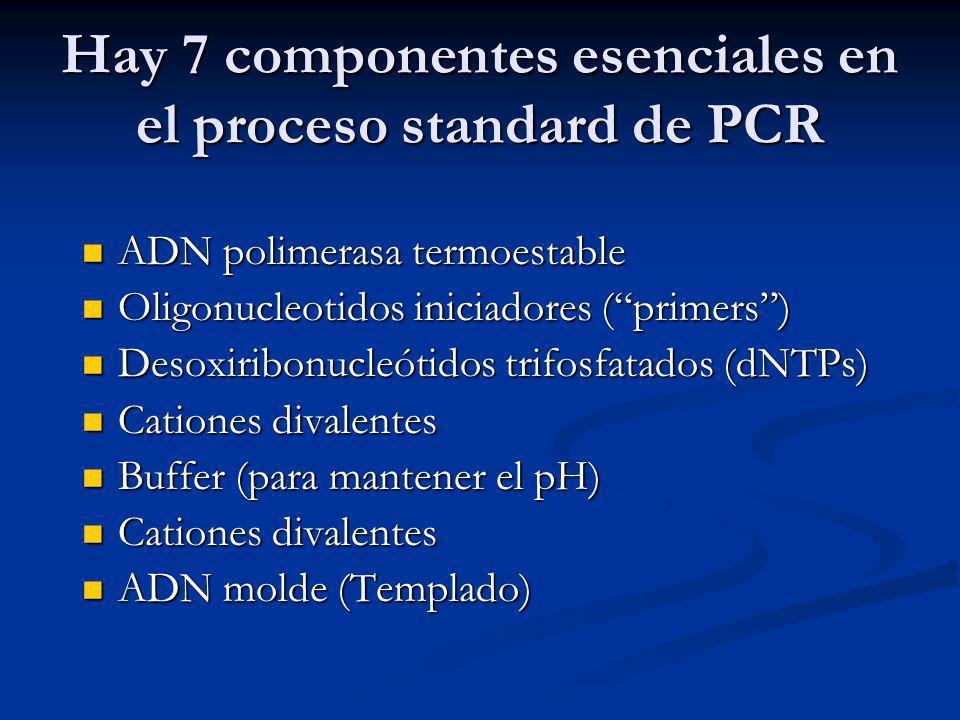 Hay 7 componentes esenciales en el proceso standard de PCR