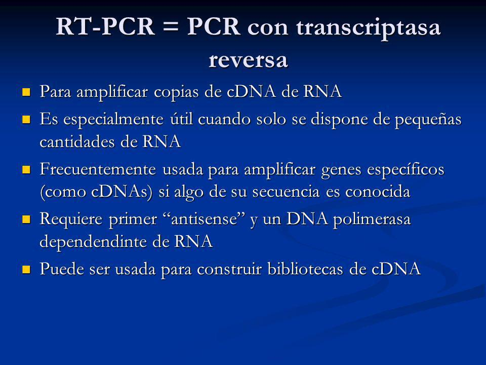 RT-PCR = PCR con transcriptasa reversa