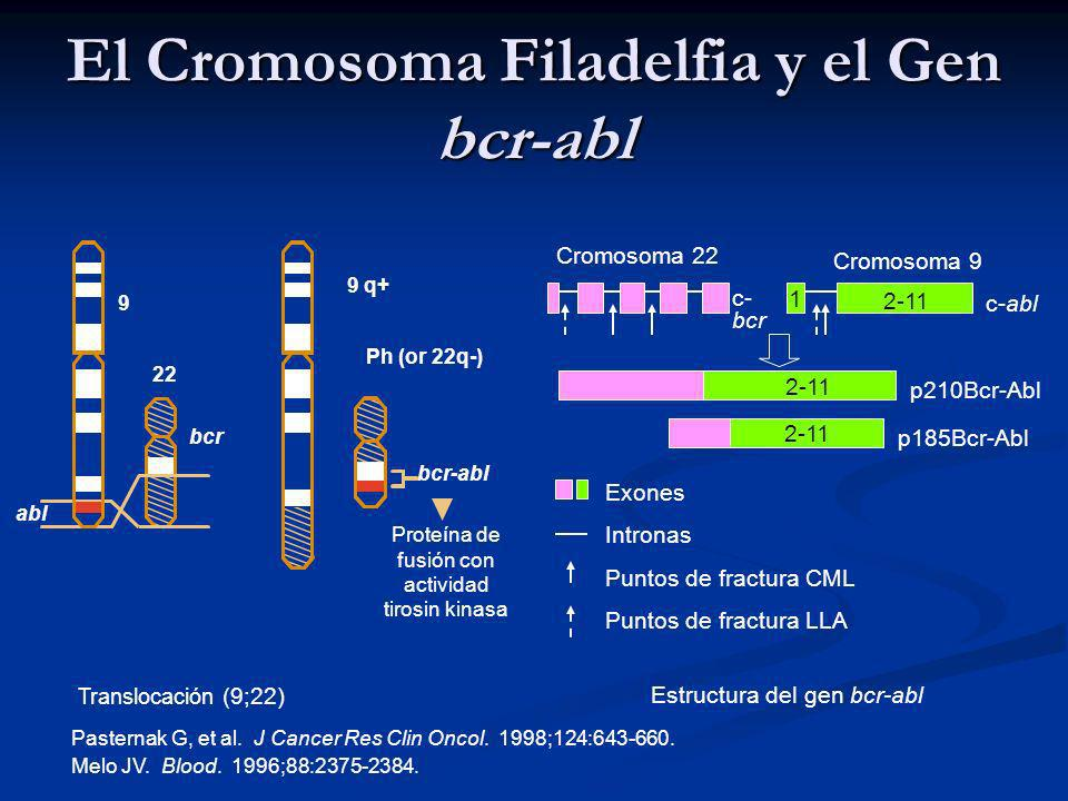 El Cromosoma Filadelfia y el Gen bcr-abl