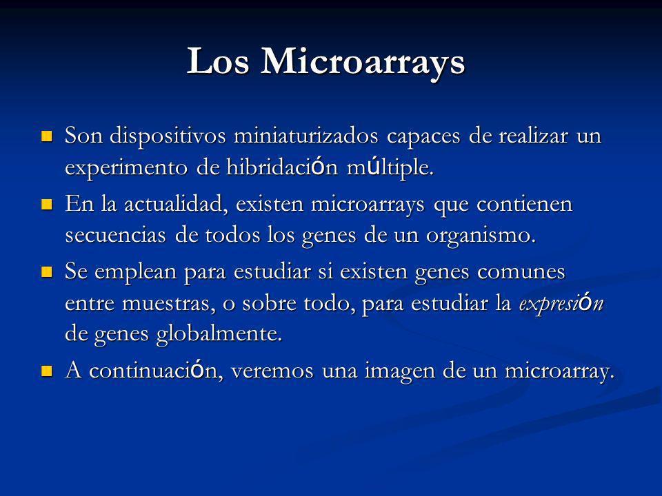 Los Microarrays Son dispositivos miniaturizados capaces de realizar un experimento de hibridación múltiple.