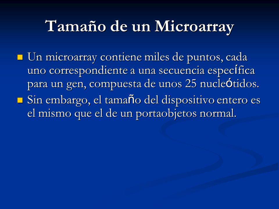 Tamaño de un Microarray