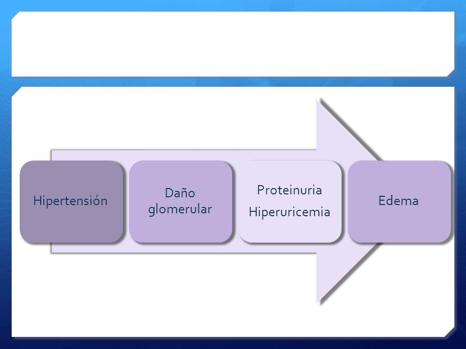 Hipertensión Daño glomerular Hiperuricemia Proteinuria Edema