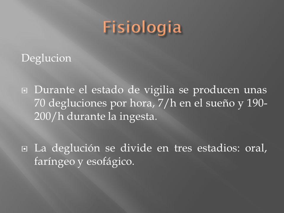 Fisiologia Deglucion. Durante el estado de vigilia se producen unas 70 degluciones por hora, 7/h en el sueño y 190-200/h durante la ingesta.