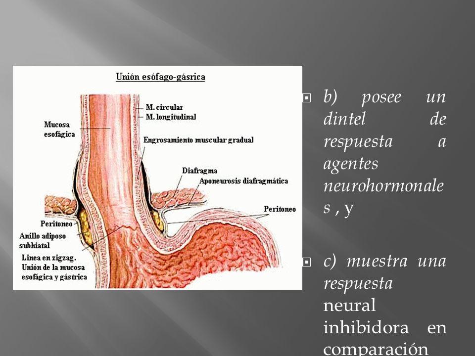 b) posee un dintel de respuesta a agentes neurohormonales , y