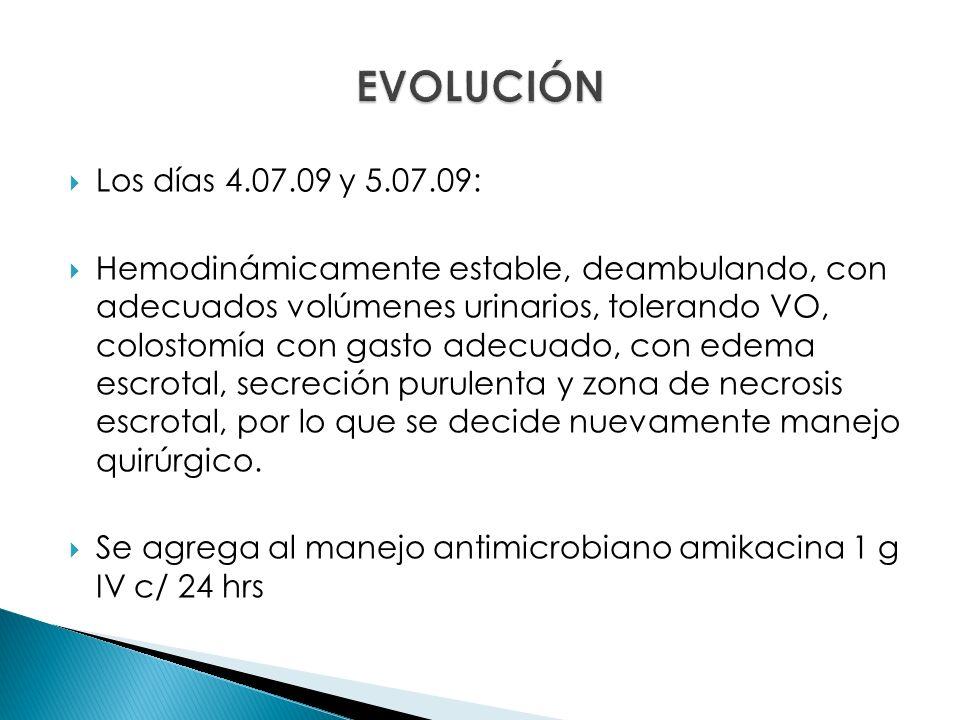 EVOLUCIÓN Los días 4.07.09 y 5.07.09: