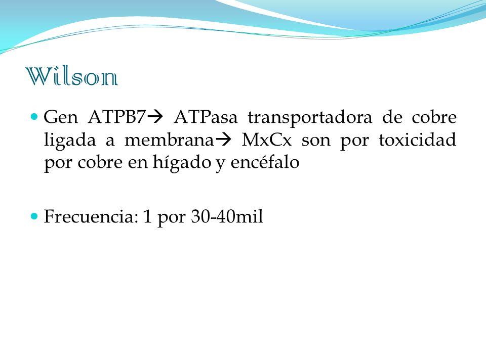 Wilson Gen ATPB7 ATPasa transportadora de cobre ligada a membrana MxCx son por toxicidad por cobre en hígado y encéfalo.