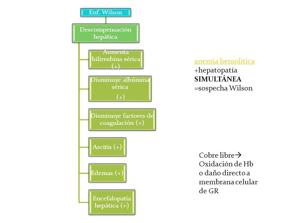 anemia hemolítica +hepatopatía SIMULTÁNEA =sospecha Wilson