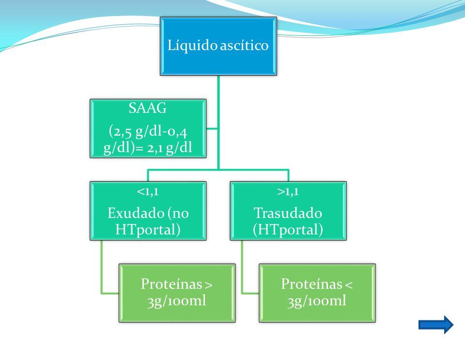 Líquido ascítico<1,1. Exudado (no HTportal) Proteínas > 3g/100ml. >1,1. Trasudado (HTportal) Proteínas < 3g/100ml.