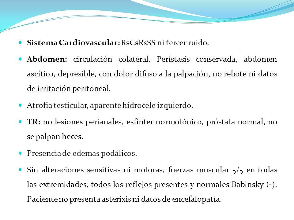 Sistema Cardiovascular: RsCsRsSS ni tercer ruido.