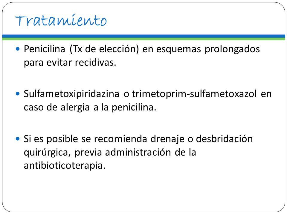 Tratamiento Penicilina (Tx de elección) en esquemas prolongados para evitar recidivas.