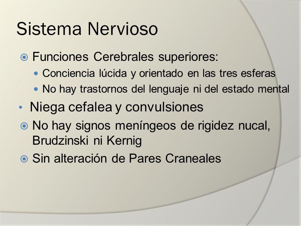 Sistema Nervioso Niega cefalea y convulsiones