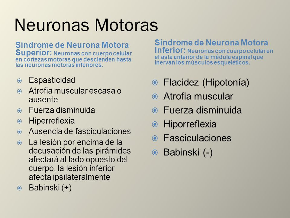 Neuronas Motoras Flacidez (Hipotonía) Atrofia muscular