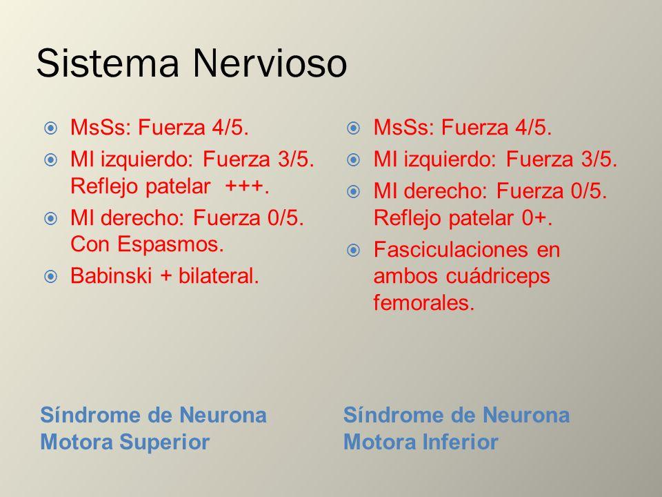 Sistema Nervioso MsSs: Fuerza 4/5.