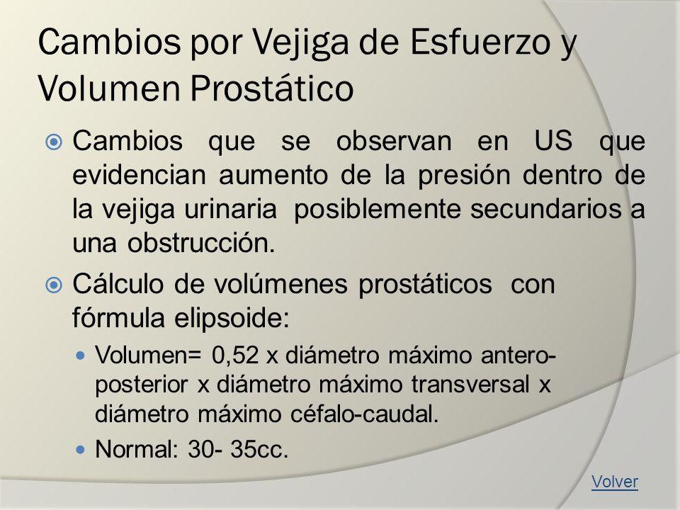 Cambios por Vejiga de Esfuerzo y Volumen Prostático